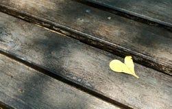Feuille de coeur Photos libres de droits