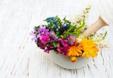 Feuille de fleur sauvage et d'herbe en mortier Photos libres de droits