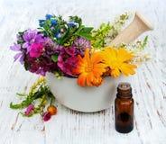 Feuille de fleur sauvage et d'herbe en mortier Photographie stock libre de droits