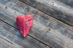 Feuille de forme de coeur sur le fond en bois Images libres de droits