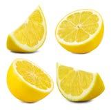 Feuille de fruit de citron Images libres de droits