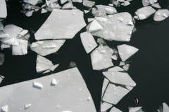 Feuille de glace cassée Image libre de droits