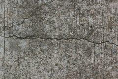Feuille de Lostus, waterlily feuille Photographie stock libre de droits