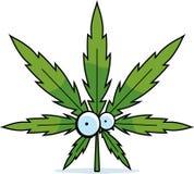 Feuille de marijuana de bande dessinée Images libres de droits