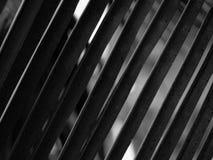 Feuille de noix de coco Photographie stock libre de droits