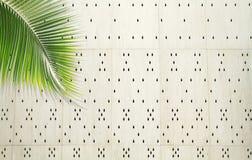 Feuille de noix de coco au-dessus du mur perforé blanc de ciment Images stock