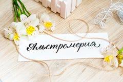 Feuille de papier avec l'Alstroemeria de Word et de fleurs sur le fond clair Images stock