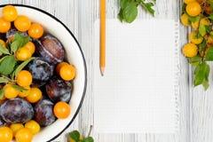 Feuille de papier entourée par les prunes et le crayon de fruits frais sur la table en bois blanche image libre de droits