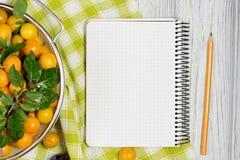 Feuille de papier entourée par les prunes et le crayon de fruits frais sur la table en bois blanche images libres de droits