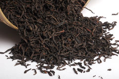 Feuille de thé sèche Image libre de droits