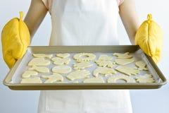 Feuille de traitement au four avec des biscuits Image stock