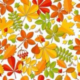 Feuille en baisse d'automne sans couture de modèle d'isolement sur le fond blanc Image stock