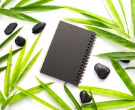 Feuille en bambou et fond de papier noir Maquette de papier noire de carnet Calibre de bannière de beauté de station thermale ave Image libre de droits