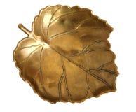Feuille en bronze image libre de droits