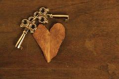 Feuille en forme de coeur et clés Photos libres de droits
