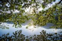 Feuille et arbre avec le fond de lumière de ciel de montagne et de coucher du soleil photo stock