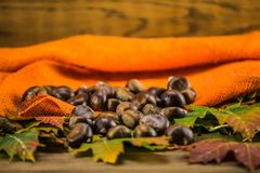 Feuille et châtaignes d'automne sur la table en bois Images stock