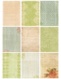 Feuille florale de collage de damassé de cru Photo stock