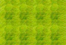 Feuille fraîche ensoleillée de texture naturelle de laitue verte de la laitue, fond de la base horizontale verte juteuse végétale Photographie stock libre de droits