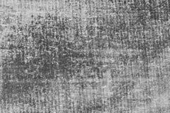 Feuille grise Image libre de droits