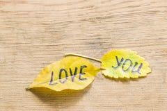 Feuille jaune avec l'AMOUR d'inscription VOUS Photo stock