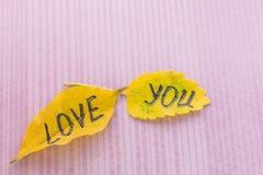Feuille jaune avec un AMOUR d'inscription VOUS Photographie stock libre de droits
