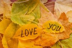 Feuille jaune avec un AMOUR d'inscription VOUS sur un fond des feuilles d'automne jaunes Image stock