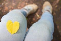 Feuille jaune en forme de coeur d'automne images stock
