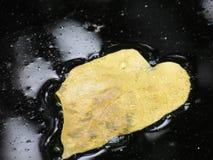 Feuille jaune en tant qu'écran frais de fond Photos stock