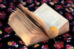 Feuille jaune sur un livre ouvert Photographie stock libre de droits