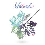 Feuille naturelle d'aquarelle faite dans la technique originale Logo d'Eco, travail créatif Objet d'isolement Photos stock