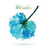 Feuille naturelle d'aquarelle Logo d'Eco, travail créatif Objet d'isolement sur un fond blanc Image stock