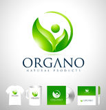 Feuille organique Logo Design Photographie stock