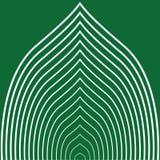 Feuille rayée verte Image libre de droits
