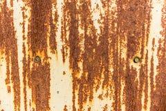 Feuille rouillée d'acier avec deux clous Image libre de droits