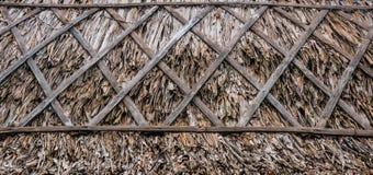 Feuille sèche par toit image libre de droits