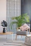 Feuille sur la table en bois à côté du fauteuil avec le coussin dans l'intérieur de salon avec la couverture Photo r?elle photographie stock