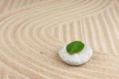 Feuille sur une roche dans le sable Photos libres de droits