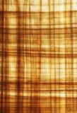 Feuille texturisée de papyrus photographie stock