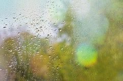 Feuille tombée coincée à la fenêtre qui devient humide des baisses de pluie Chauffez le regard la fenêtre pour l'automne images libres de droits