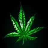 Feuille verte de cannabis sur le fond noir Image stock