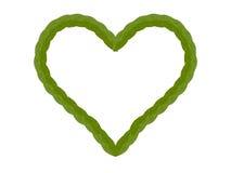 Feuille verte de coeur d'isolement sur le fond blanc Images libres de droits