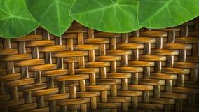 feuilles avec la vannerie fabriquée à la main du rotin pour le backgroun Images stock