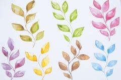 Feuilles colorées d'aquarelle réglées sur le fond blanc Peinture de main sur le papier Isoalted illustration stock