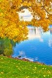 Feuilles colorées et vibrantes et arbres d'automne avec le lac Photo stock