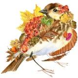Feuilles colorées fond, fruit, baies, champignons, feuilles jaunes, cynorrhodons de nature d'automne d'oiseau de forêt sur le fon illustration stock