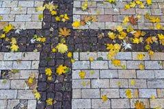 Feuilles colorées tombées sur le trottoir photo stock