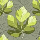 Feuilles décoratives de figue illustration stock