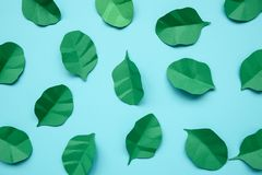Feuilles d'épinards et d'arugula faites à partir du papier sur le fond bleu Concept minimal, cr?atif, de vegan, sain ou de nourri photos stock