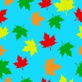 Feuilles d'érable d'automne illustration de vecteur